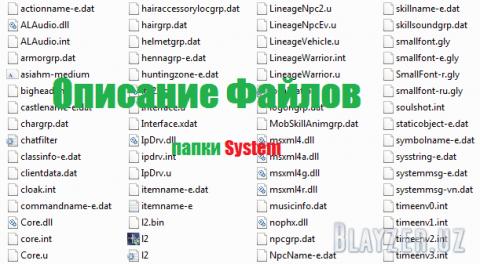 Описание файлов из папки system клиента Lineage 2