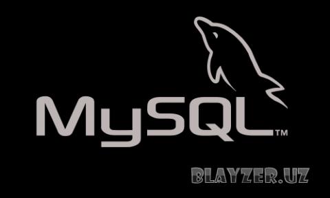 MySQL Ver 5.5